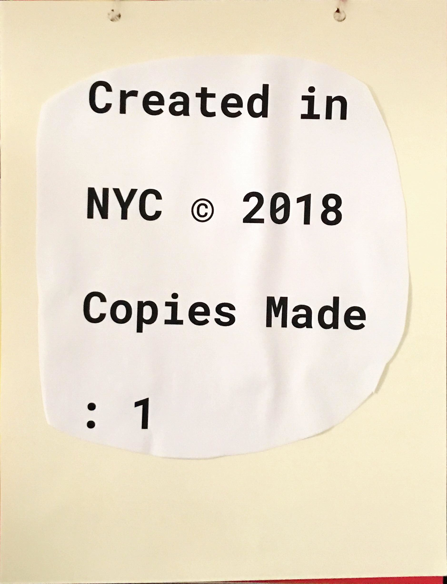 Copyrights, year that it was produced in, how many copies was made.